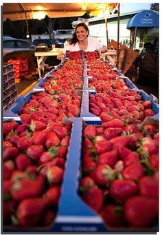 Florida Strawberry Festival. Used to go to this all the time as a kid