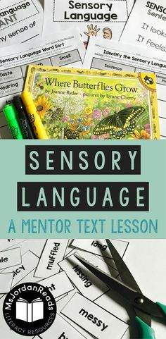 Teaching Sensory Lan