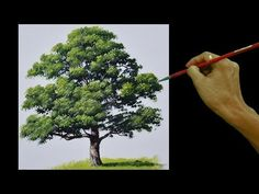 How to Paint an Oak Tree in Real Time Basic Acrylic Painting Tutorial for Beginners by JM Lisondra Tree Painting Easy, Acrylic Painting Trees, Acrylic Painting For Beginners, Acrylic Painting Lessons, Simple Acrylic Paintings, Time Painting, Spring Painting, Watercolor Trees, Easy Watercolor
