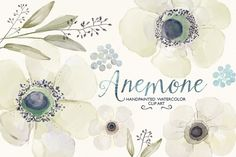 Check out Watercolor ranunculus clip art by GrafikBoutique on Creative Market