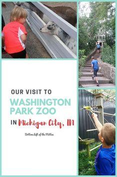 Visit to Washington Park Zoo in Michigan City | Bottom Left of the Mitten #zoovisit #funwithkids #michigancity
