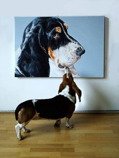 Contemporary Dog Portraits - for candid, quirky, intense, pet portraits for art and dog lovers .it's PaintMyDog! Basset Puppies, Basset Hound Dog, Hush Puppies, Beagles, Dachshund, Bassett Hound, Dog Portraits, Portrait Art, Fauna
