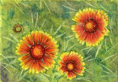 Orange anemone/blanket flower painting 5x7 original