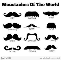 Moustaches typology - Graphic Design