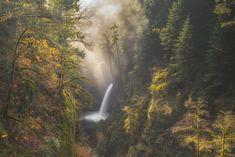 米国オレゴン州、コロンビア川渓谷。朝の散歩で訪れたメトラコ滝で美しい風景をとらえた。