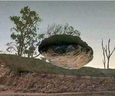 Turn your  Phone Upside down