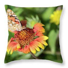 Flower Throw Pillow featuring the photograph Siesta by Natalya Antropova