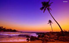 Tropical Beach Sunset Colors Wallpaper - WallDevil