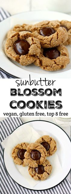 These traditional holiday cookies are made allergy friendly with sunbutter! (Sunbutter is sunflower seed butter) Everyone can enjoy these treats - they are free of the top 8 allergens and delicious! Dessert Sans Gluten, Gluten Free Desserts, Vegan Desserts, Dessert Recipes, Vegan Recipes, Cookie Recipes, Vegan Sweets, Cobbler, Fudge