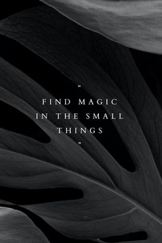 Gold Wallpaper Background, Plant Background, Wallpaper Iphone Quotes Backgrounds, Black Backgrounds, Phone Wallpapers, Black And White Photo Wall, Quotes About Motherhood, Black Leaves, Aesthetic Words