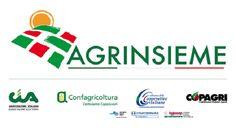 Rimini: Stati generali della green economy a Ecomondo