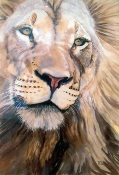 Pam Quinlan - Watercolors, Lion - 380 x 560