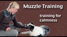Muzzle Training- focusing on calmness - clicker dog training Dog Training Tools, Best Dog Training, Brain Training, Teach Dog Tricks, Reactive Dog, Dog Commands, Dog Muzzle, Dog Anxiety, Aggressive Dog