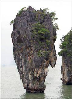 Vinodam Tree Stones