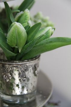 Exquisitely delicate Snowdrops.  Visit : http://flowersvalentinesday.blogspot.com/2012/05/black-white-wedding-bouquet-table.html
