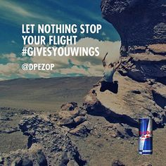 Let nothing stop your flight. #givesyouwings