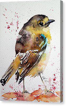 Robin Canvas Print by Kovacs Anna Brigitta