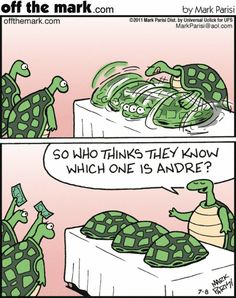 Turtles have Shells. They live long lives. They therefore have a lot of time to get very skilled at Shell Games.