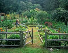 Square foot gardening at it's best.  I love the fence.  I love the fruit trees.  This is my dream!  <3