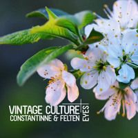 Vintage Culture, Constantinne, Felten - Eyes (Out Now) by Vintage Culture on SoundCloud