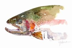 Mark Yuhina, I love watercolor and I am now itching to get out and cast some flies to the wild river Gods.