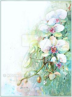 Orchid by kosharik69