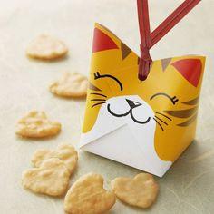 บรรจุภัณฑ์กล่องคุ๊กกี้น่ารักๆกับ Cat Cookies จาก Bunjupun.com