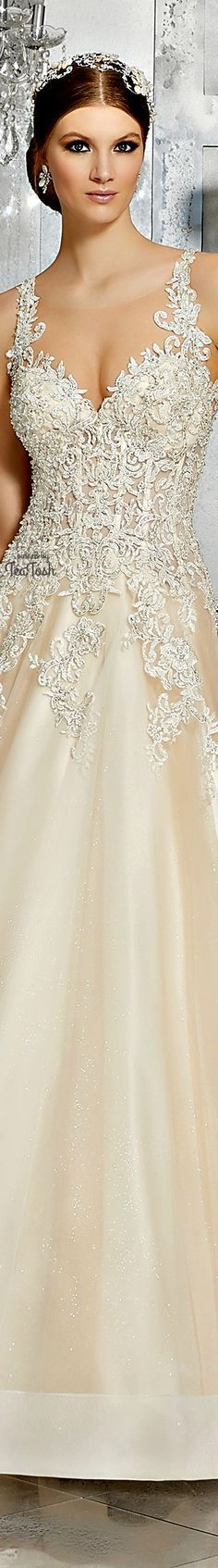❇Téa Tosh❇ (Front) Mahala Wedding Dress Beautiful Wedding Gowns, Glamorous Wedding, Beautiful Bride, Romantic Princess, Princess Wedding, Older Bride, Weeding Dress, Here Comes The Bride, Pretty Woman