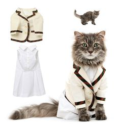 Fashionable Felines: Cat Clothing Collection From United Bamboo photo Audrey Kitching's photos - Buzznet... Oh...MY!!!! <3 <3 <3