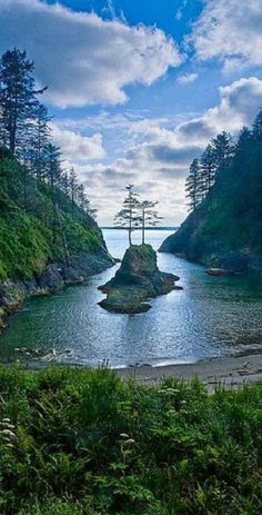 ~~Dead Mans Cove, Cape Disappointment shelters a small island with two pine trees, Washington State by paulgillphoto~~