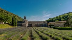 Provence, Dame, Vineyard, Facebook, Outdoor, Communities Unit, France, Architecture, Jewlery