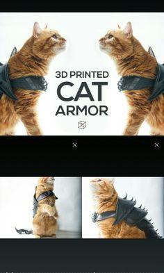 3D yazdırılmış kedi zırhı (gladyatör kedi)