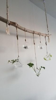 Crafted this hanging propagation station, 3 glass globes for propagation and the 2 in between have tea lights that light up at night! Might string a fake vine around the driftwood : propagation Hanging Tea Lights, Diy Hanging, Hanging Planters, Plant Wall, Plant Decor, Plant Lighting, Herbs Indoors, Plant Shelves, Propagation