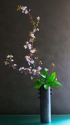 Gendaika di primavera