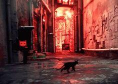 HK Project Cat GIF - cat RPG!!!