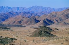 The Maerpoort valley, in the midst of seemingly forbidding landscape in Richtersveld Transfrontier National Park, is seen here with the spectacular Rosyntjieberg mountains in the background. Succulent Species, All About Africa, Mountain Pass, Countries Of The World, African Art, South Africa, Places Ive Been, Succulents, National Parks