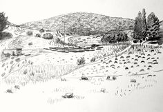 Maria Zaikina| Landscape with cows, 29.7x21 cm, pencil on paper, 2016