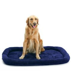 Large Pet Dog Cat Bed Puppy Cushion House Pet Soft Warm Kennel Dog Mat Blanket #Unbranded Large Dog Cage, Large Dogs, Crate Bed, Dog Crate, Leather Bed Frame, Dog Pads, Large Cushions, Home Living, Doge