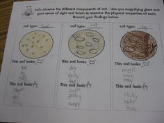 Third Grade Thinkers: Types of Soil Investigation and Printable