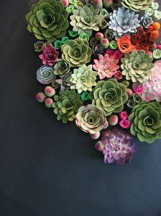 FLOWER | colorful succulents /