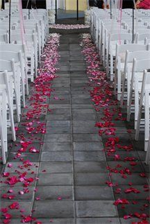 Ombre Flower Petal Aisle  luscious petals...eco-friendly  www.flyboynaturals.com