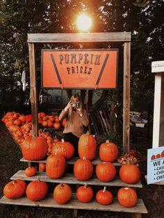 𝚙𝚒𝚗𝚝𝚎𝚛𝚎𝚜𝚝 | emerald sue 🍂 Days Until Halloween, Halloween Season, Halloween 2019, Fall Halloween, Vintage Halloween, Holiday Countdown, Autumn Aesthetic, Fall Baby, Flowers