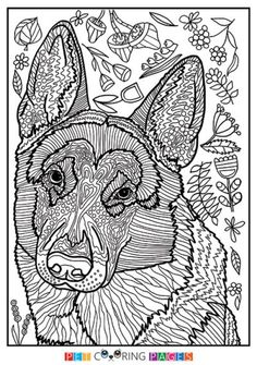 1220 Best Color Pages Images Coloring Pages Coloring Book