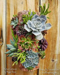 Nice arrangement by Megan Boone and pot  by Constance Kuhn