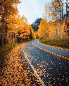 19 Fall Photos From Across the Globe Landscape Photography Tips, Nature Photography, Travel Photography, Autumn Scenes, Autumn Aesthetic, Destinations, Time Photo, Fall Photos, Autumn Inspiration