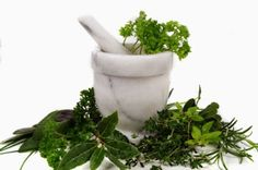 Herbs are what are natural and you can very well take help of these herbs for weight loss. Have you ever thought why people in the past were not so bothered about getting fat? Why obesity was not a problem as it is today? From the time onwards when people started processing natural foods and leading life which lacks physical movements.