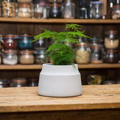 Large Matt Grey Ceramic Planter Plant Pot - pots & planters