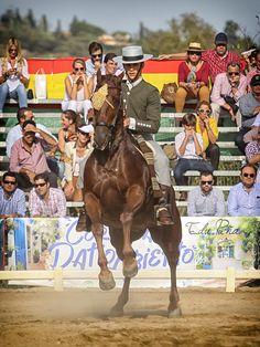 Álvaro Teba y Tiburona #domavaquera @edupenafoto #sevilla #huelva #mairenadelalcor #visodelalcor #elrocio #fei #caballos #lospalaciosyvillafranca #carmona #jerez #villanuevadelrioyminas #cantillana #umbrete #alcaladeguadaira #horses #sambartolomedelatorre #puebladeguzman #andalucia #villanuevadelrioyminas #jerez #cordoba #jerez #elrocio #manzanilla #villalbadelalcor #hinojos #lapalmadelcondado @edupenafoto #lepe