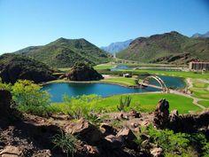 Turismo ecologico en baja california sur http://1.bp.blogspot.com/-EKRF1Atyejg/T4ja2xf-K7I/AAAAAAAACJI/WM1ZOzF7TAs/s1600/5-BCS.jpg