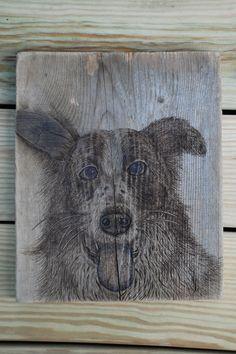 """Flash"" Custom Pet Portrait Woodburning by Trevor Moody of Dirigo Craft & Supply Co."